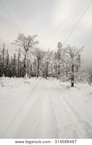 Winter Scenery With Snow Covered Hiking Trail With Few Frozen Trees And Overcast Sky Bellow Velky Po