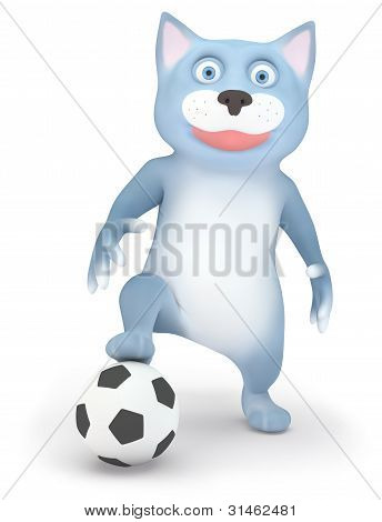 Cat and soccer ball