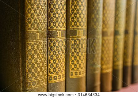 Wooden Shelf With Classic Literature In The Library. Numbered The Old Spines Of Books. Background Ab