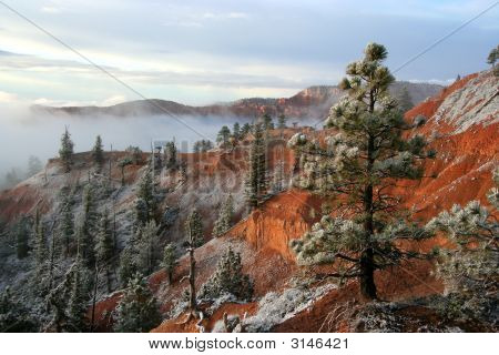 Bryce Canyon Early Morning