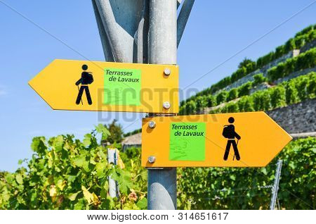 Yellow Tourist Sign In French Saying Terraces Of Lavaux Giving Directions In Famous Lavaux Wine Regi