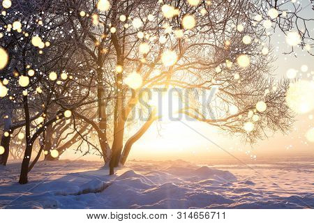 Winter Christmas Background. Illuminated Snowflakes Bokeh. Winter Nature Landscape With Bright Sun.