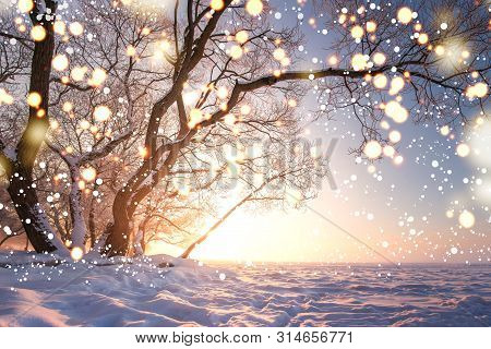 Christmas Background. Magic Glowing Snowflakes In Winter Nature Landscape. Beautiful Winter Scene Wi