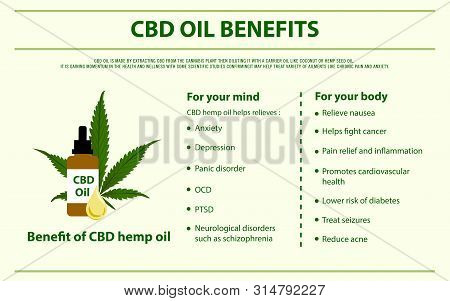 Cbd Oil Benefits Horizontal Infographic, Healthcare And Medical Illustration About Cannabis