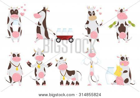 Cute Happy Cow Collection Cartoon With Milk Bottle. Cow Eating Grass, Funny Farm Animal Cartoon Char