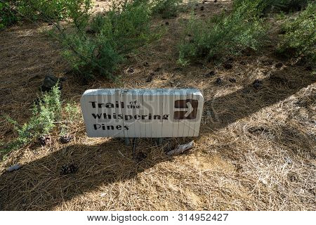 Sign For The Trail Of Whispering Pines In Lava Lands Newberry Volcano. National Monument In Central