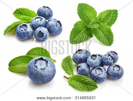 Set Berry Blueberry with Leaf mint. Fruity Still Life for Packing. Isolated on White Background, blueberries isolated.