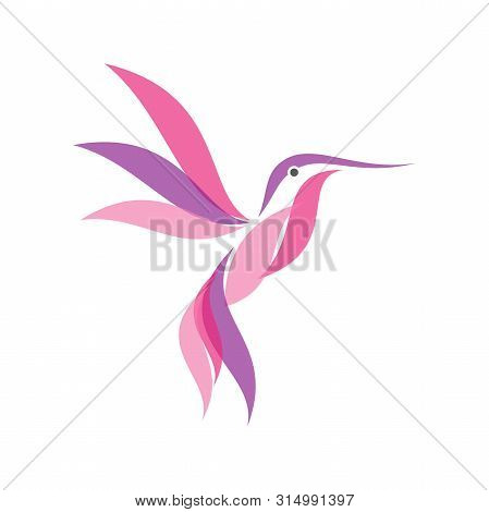 Colorful Hummingbird Icon Symbol In Modern Flat Style. Hummingbird Vector Symbol For Element Design.
