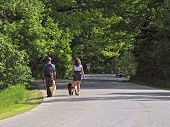 Young couple walking their dogs on a nice morning in the park. A great way to work out! poster