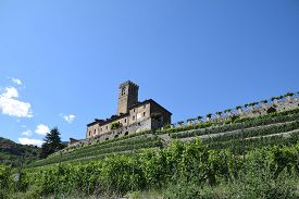 The Castle Of Sarre And Its Estate Farm Estate Cultivated With Vineyards - Italy
