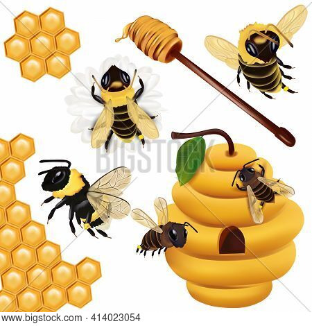 Set Honey Bee, Wasp, Bumblebee, Honeycomb, Beehive, Honey Dipper With Honey On White Background. 3d