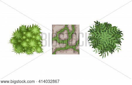 Bush Growth And Gravel Pathes As Landscape Elements Vector Set