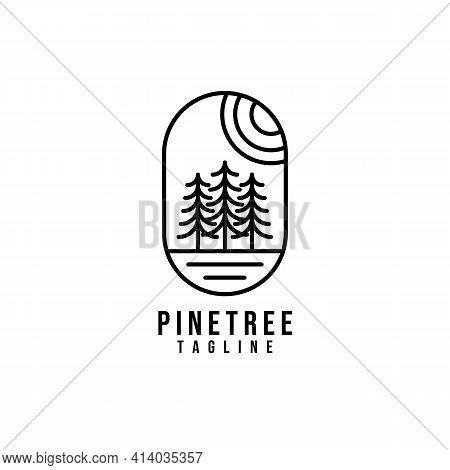 Pine Tree Logo Vector Illustration Design, Creative Pine Tree Logo