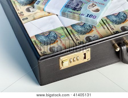 Romanian Currency In A Briefcase