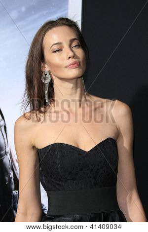 LOS ANGELES - JAN 23: Stephanie Corneliussen at the LA premiere of Paramount Pictures' 'Hansel And Gretel: Witch Hunters' at Grauman's Chinese Theater on January 24, 2013 in Los Angeles, California