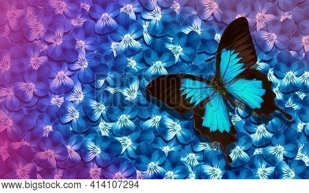 Bright Blue Summer Background. Blue Tropical Butterfly Ulysses On A Flowers. Flowers And Butterfly T