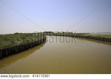 Po River (fe),  Italy - April 30, 2017: A Canal Near The Po River View From A Tourist Boat, Delta Re