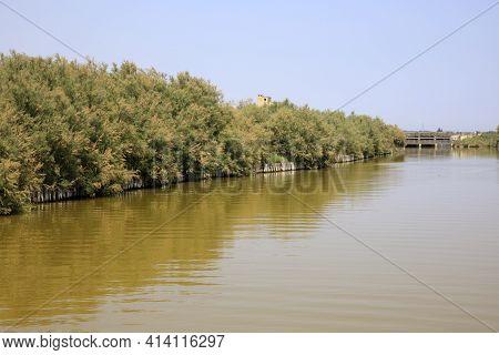 Po River (fe),  Italy - April 30, 2017: A Canal In The Po River, Delta Regional Park, Emilia Romagna