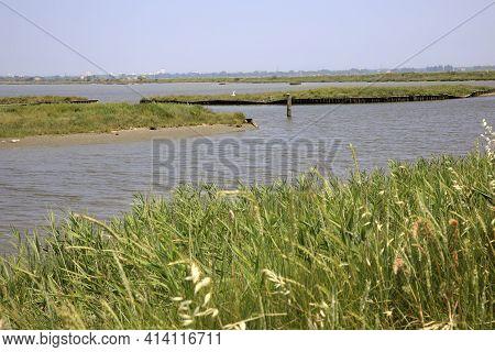 Po River (fe),  Italy - April 30, 2017: Typical Rural Scenery Near Po River, Delta Regional Park, Em