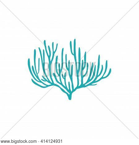 Tropical Seabed Plant Isolated Soft Coral Reefs Marine Life Object. Vector Soft-tip Blue Coral, Unde