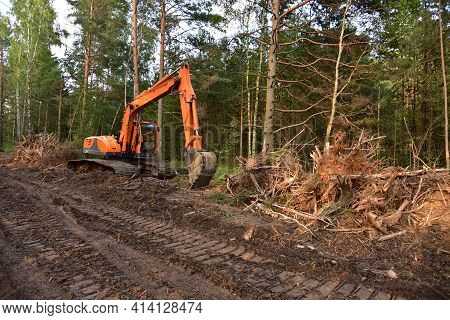 Excavator Clearing Forest For New Development. Orange Backhoe Modified For Forestry Work. Tracked He
