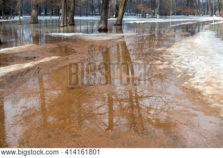 Melt Snow Forms Large Puddles In The City Park In Early Spring. St. Petersburg, Vyazemsky Park. Tree