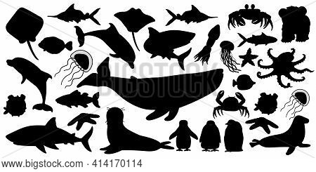 Big set of vector silhouette cartoon isolated sea ocean north animals. Whale, dolphin, shark, stingray, jellyfish, fish, stars, crab, king Penguin chick, octopus, fur seal, polar bear cub on white