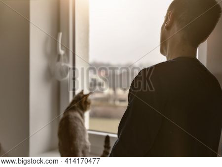Hopeful Sad Man Looking Through The Window With His Cat. Stay At Home And Hope That The Pandemic End
