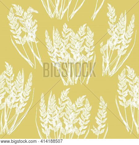 Seamless Decorative Hand Drawn Floral Pattern With White Fluffy Dry Grass Stems On Yellow Background