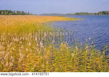 Beautiful Landscape With Lake In The Fall. Vuoksa Lake - A Picturesque Lake In Leningradskaya Oblast