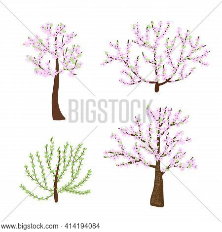 Cherry Blossom Trees, Bushes Set With Delicate Light Pink Flower Branches In Simple Flat Style, Vect