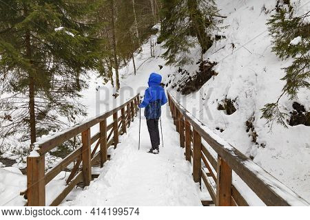 Woman - Hiker On Pedestrian Wooden Bridge In  Snowy Mountain Gorge At Winter. Location: Zhenetskyi (