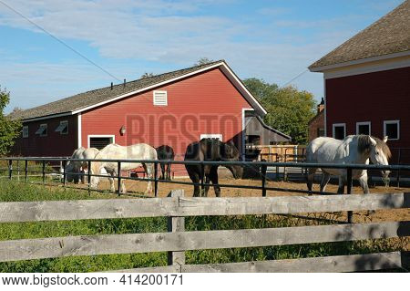 DEARBORN, MICHIGAN - 29 SEPT 2006: Farm area at the Henry Ford Museum with barn and horses.