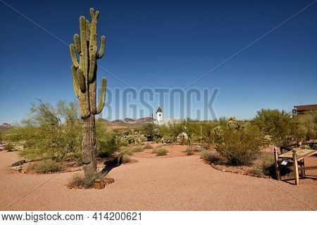 APACHE JUNCTION, ARIZONA - 8 DEC 2016: Landscape at the Superstition Mountain Museum with the Elvis Memorial Chapel in the background, in Apache Junction, Arizona.
