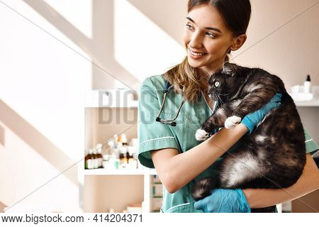 I Love Each Of My Patients Smiling Female Vet Holding A Big Black Fluffy Cat In Her Hands, Smiling A