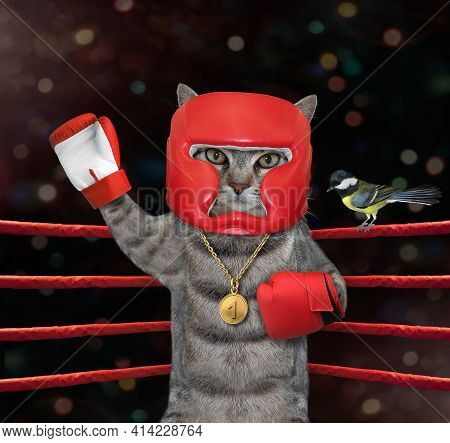 A Gray Cat Athlete In Red Boxing Uniform With A Gold Medal For First Place Stands In The Corner Of A