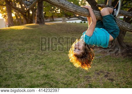 Young Kid Boy Playing And Climbing A Tree And Hanging Upside Down. Teen Boy Playing In A Park