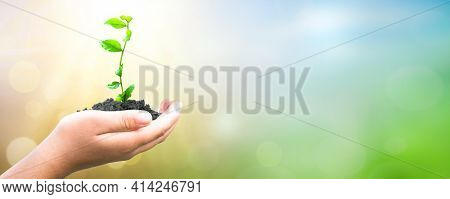 Earth Day Concept: Hand Holding  Plant And Earth On Blur Green Nature Background