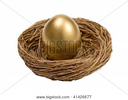 Golden Egg Standing In Nest Isolated