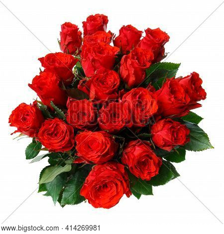 Many Bright Red Roses On A White Background.