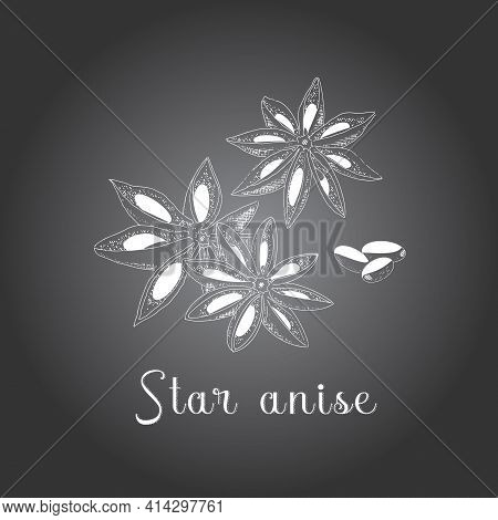 Anise Sketch Illustration In Vintage Style. Star Anise, With Grains, Chalk Drawing On A Chalkboard