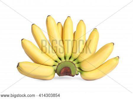 Bunch Of Ripe Mini Bananas On White Background. Exotic Fruit