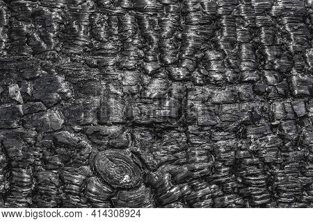 Burnt Black Wood Texture, Abstract Charred Barbecue Background.