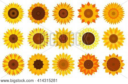 Sunflower Vector Cartoon Set Icon. Vector Illustration Flower On White Background. Isolated Cartoon