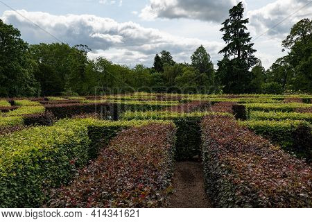 Path In The Middle Of A Maze Near Scone Palace In Perthshire, Scotland