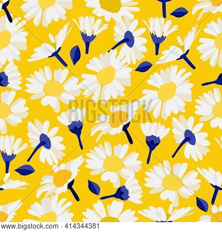 Decorative Floral Elements Chamomile. Vector Seamless Floral Pattern. Bright Decorative Daisies, Cha