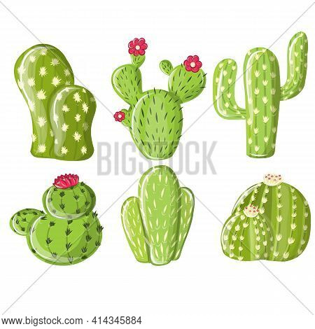 Vector Set Of Green Cactus Plants. Isolated Elements For Design. Cartoon Cactus Set. Vector Set Of B