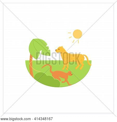 Tropical Rainforest Flat Icon.humid And Warm Place.located Near The Equator.living Place For Dangero