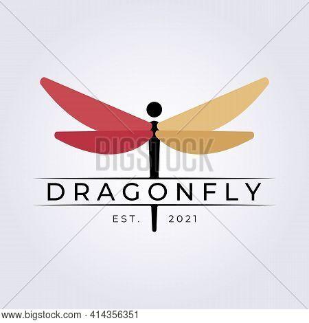 Dragonfly Logo Vector Illustration Design Graphic, Beautiful Species Logo