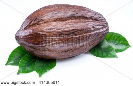 Cocoa pod with cocoa leaves isolated on a white background.
